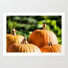 autumn vegetable Art Print
