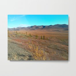 The Arctic Tundra in Fall Colors Metal Print