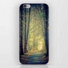 Licht am Ende des Weges iPhone & iPod Skin