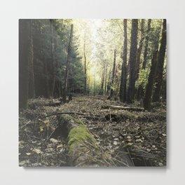 Autumn green Metal Print