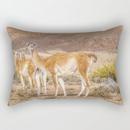 Group of Guanacos at Patagonia, Argentina Rectangular Pillow