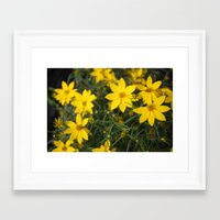 rileigh smirl Framed Art Prints featuring Yellow Flowers by Rileigh Smirl