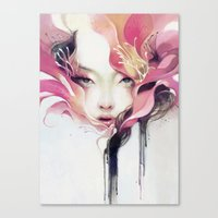 flower Canvas Prints featuring Bauhinia by Anna Dittmann