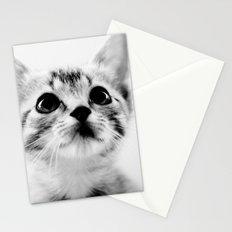 Sweet Kitten Stationery Cards
