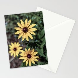 Three Gloriosa daisies Stationery Cards