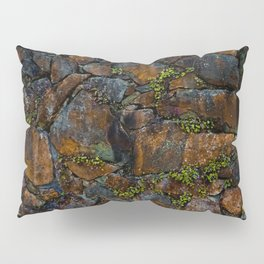 Mother of Thousands Pillow Sham