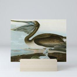 Brown Pelican - John James Audubon's Birds of America Print Mini Art Print
