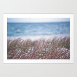 Gulf Coast Breeze Art Print