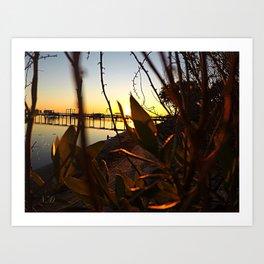 Lit Leaves Art Print