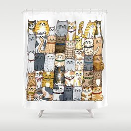 The Glaring Shower Curtain