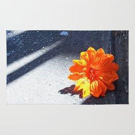 Orange You Glad? Rug