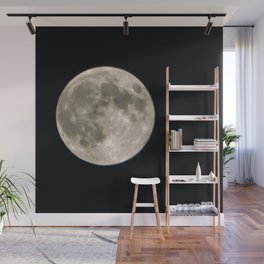 June Full Moon Collection 3 Wall Mural