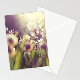 Dandelions Flowers Sunlight Abstract  Stationery Cards