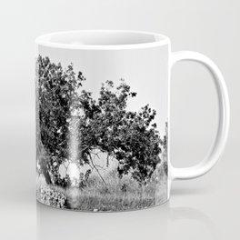 Olive Tree Stone Wall Mediterranean Landscape Coffee Mug