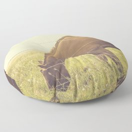 Texas Horse Grazing Floor Pillow