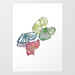Detailed butterfly's Art Print