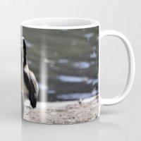 ducks Mugs featuring Ducks by Phil Hinkle Designs