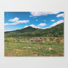 Countryside • Appalachian Trail Canvas Print