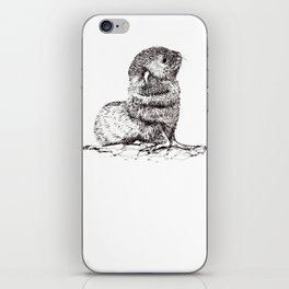 Baby Seal iPhone Skin