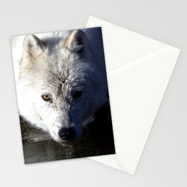Quenched Stationery Cards