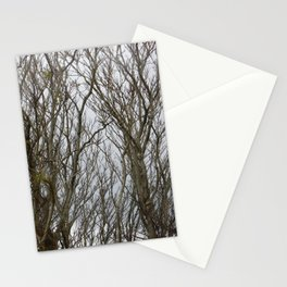 Twisted Trees Stationery Cards