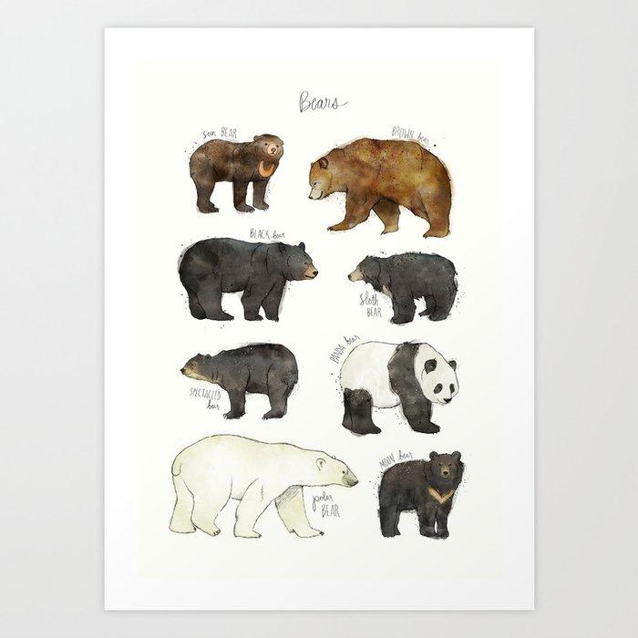 Bears Kunstdrucke