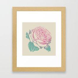 rosa rosae rosarum Framed Art Print