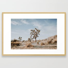 Joshua Tree II Framed Art Print