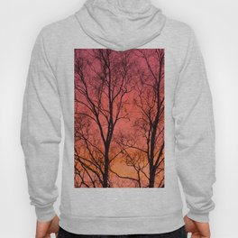 Tree Silhouttes Against The Sunset Sky #decor #society6 #homedecor Hoody