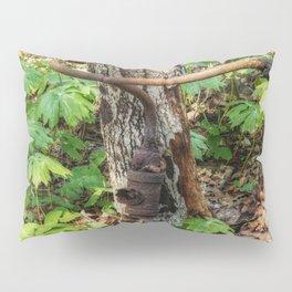 Forgotten Pillow Sham