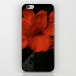 Flower Of Her Flames iPhone Skin