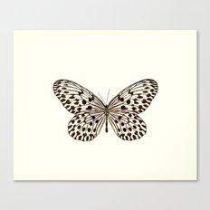 Butterfly Idea hypermnestra! Canvas Print
