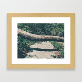 In your path Framed Art Print