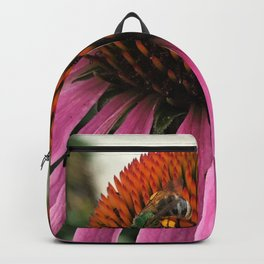 Collecting Pollon Backpack