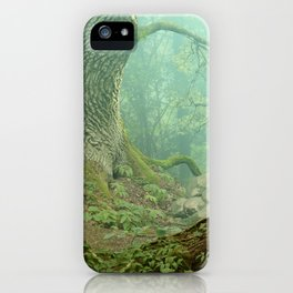 Enchanted misty forest iPhone Case