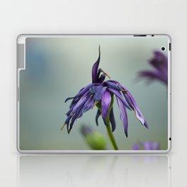 violet color Laptop & iPad Skin