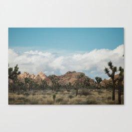 Joshua Tree in a blur Canvas Print