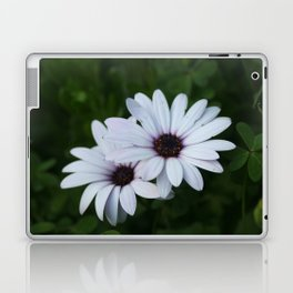 Friendship - Two African Daisies Laptop & iPad Skin