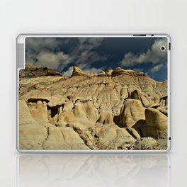 One Last Look Laptop & iPad Skin