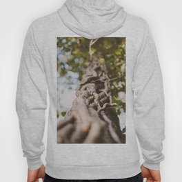 Roots of nature Hoody