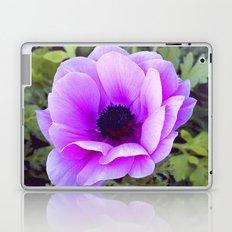 Pink Poppy Anemone I Laptop & iPad Skin