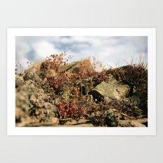 Soul Nature Art Print