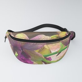 The orchids are blooming. Fanny Pack