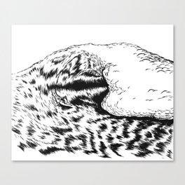 SURFRIDER Canvas Print