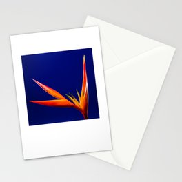 Flower orange blue 7 Stationery Cards