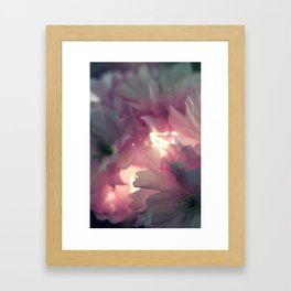 sakura - close up - one Framed Art Print