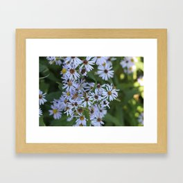 Bee Pretty Framed Art Print