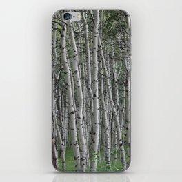 Among the Aspens iPhone Skin