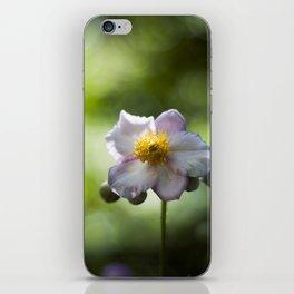 Japanese Windflower Light iPhone Skin