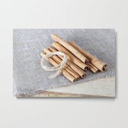 rope cinnamon Metal Print